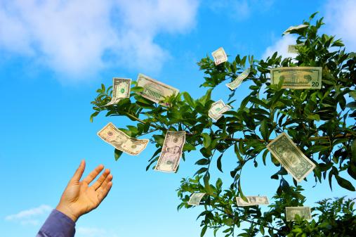 HOA Board   money on trees resized 600