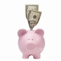piggy_bank_with_dollar_bills_sticking_out